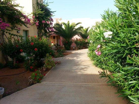 SunConnect Zorbas Village: Hotelowe ścieżki