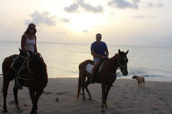 Nevis Equestrian Centre: 1