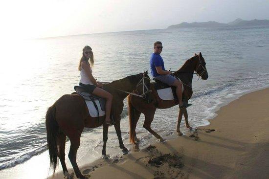 Nevis Equestrian Centre: 4