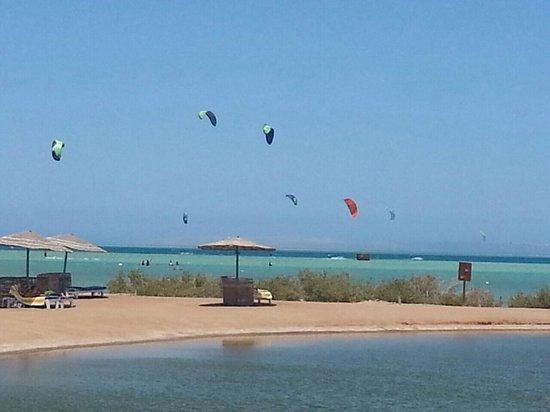 Moevenpick Resort & Spa El Gouna: The beach