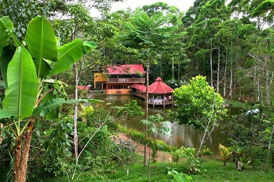 Rain Forest Adventure: Rainforest Adventures: El Tour Del Campo (Paz del Campo Restaurant and Tilapia Farm)