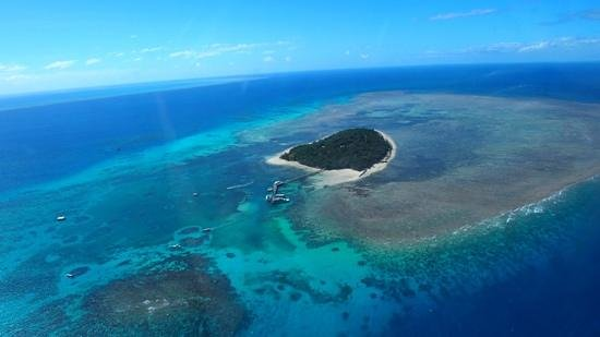 Big Cat Green Island Reef Cruises - Day Tour: Green Island from the helicopter