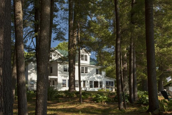 Wolf Cove Inn : Majestic pines stand as sentinals of peace for your visit.