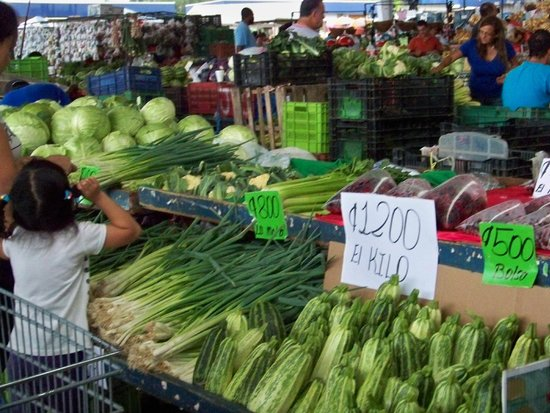 Pura Vida Hotel : Market Tour