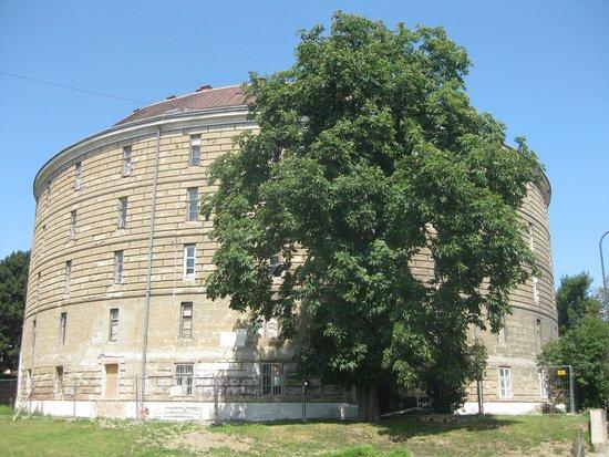 Federal Pathologic-Anatomical Museum: The Narrenturm