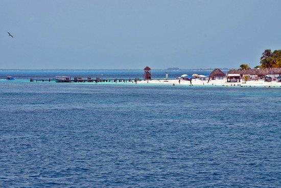 Playa Norte : Isla Mujeres Desde el Ferry