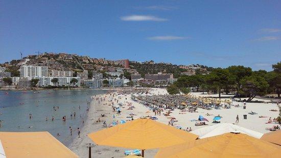 Bahia del Sol Hotel: Santa Ponsa Beach