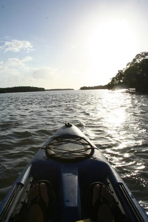 Shurr Adventure Company Day Tours: Open water kayaking