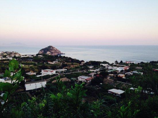 Punta Chiarito Resort Hotel Ristorante : Panorama dalla camera