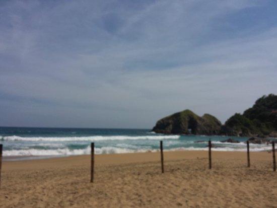 Hotel Nude Zipolite: La playa del hotel