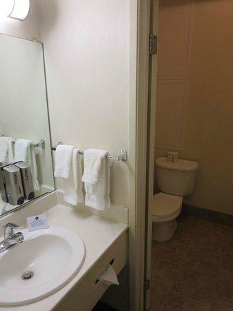 The Loyal Inn: Bathroom