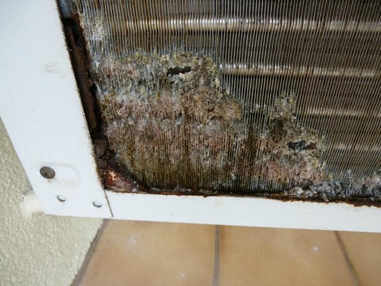 Maui Kamaole : Filth in the air conditioner