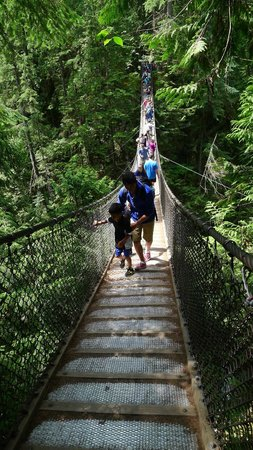 Lynn Canyon Suspension Bridge: Not as hectic as Capilano