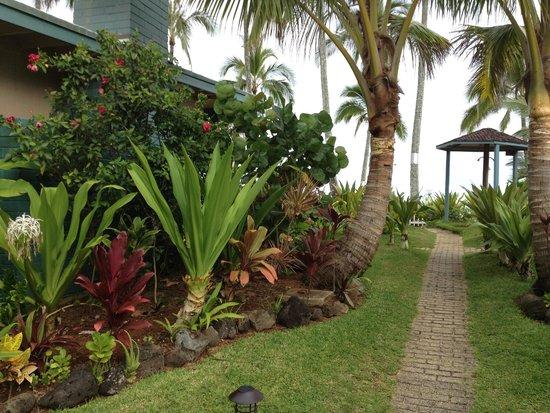Ke Iki Beach Bungalows: Walk through Ke Iki grounds approaching beach