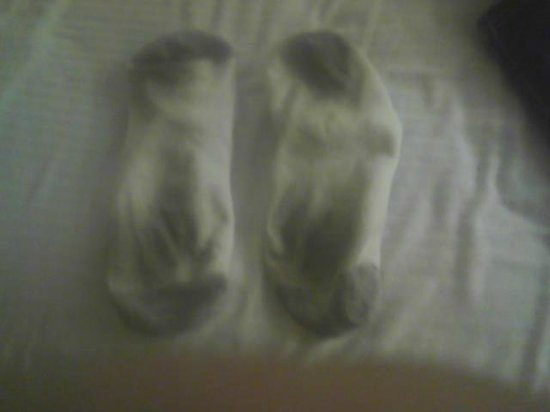 Baymont Inn & Suites Brunswick GA: Very dirty socks after just a few minutes