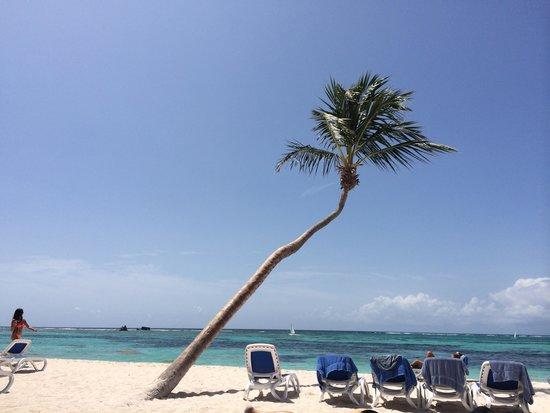 Club Med Punta Cana : Beach photo