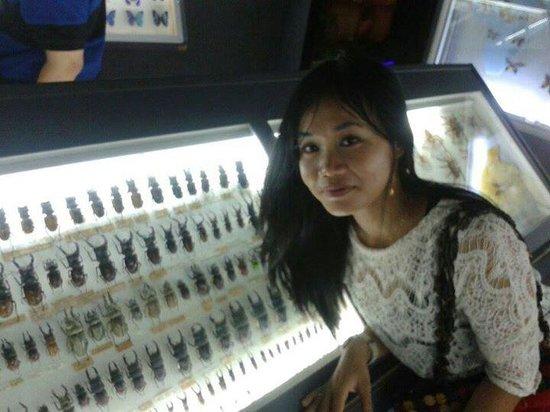 Entopia : Object wisata yg sekaligus berpotensi sebagai sarana edukasi
