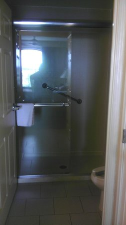 Staybridge Suites Wilmington East: Sliding Glass shower doors