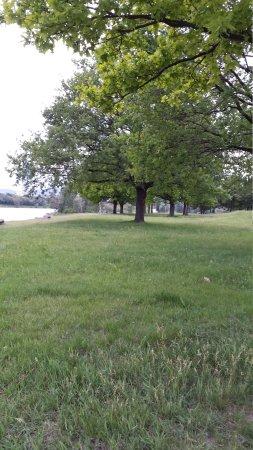 Donaupark: Walkway Adjacent to Donau