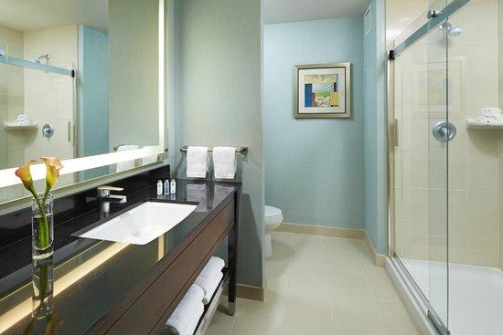Hampton Inn San Diego/Mission Valley: Bathroom
