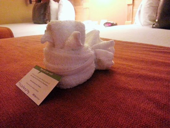 BEST WESTERN PLUS Rio Grande Inn: Towel Animals!