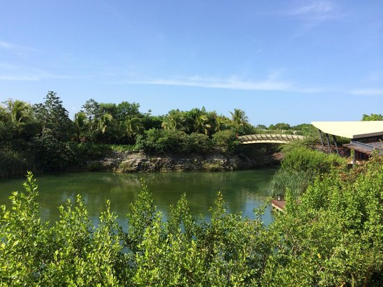Rosewood Mayakoba: View from Lobby