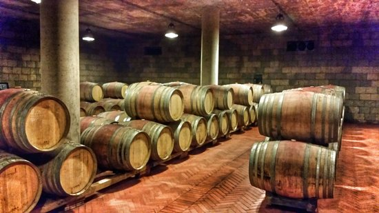 Tuscan Wine Tours by Grape Tours : Wine barrels on Tuscany wine tour