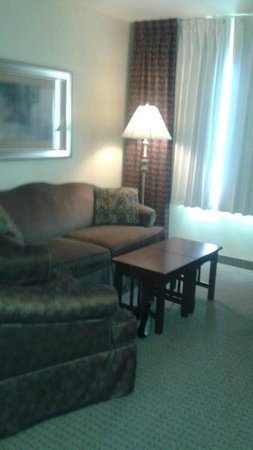 "Staybridge Suites: ""living room"" sofa in suite. Chair in the room, too, but not in pic"