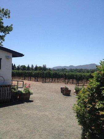 Lonnie's Wine Tours & Transportation: Winery