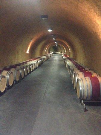 Lonnie's Wine Tours & Transportation: Underground Wine Cave