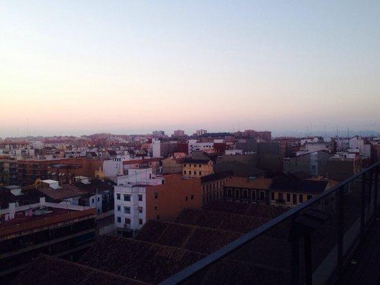 Hotel Marina Atarazanas: Visuale dalla terrazza del hotel