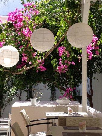 Apollon Boutique Hotel: Breakfast area