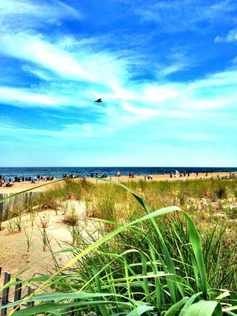 """Hotel Rehoboth: Rehoboth Beach...after the """"hurricane"""" passed by"""
