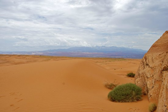 ATV and Jeep Adventure Tours: view from the dunes