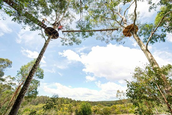 TreeTop Adventure Park Western Sydney: Exciting challenges in the tree tops!