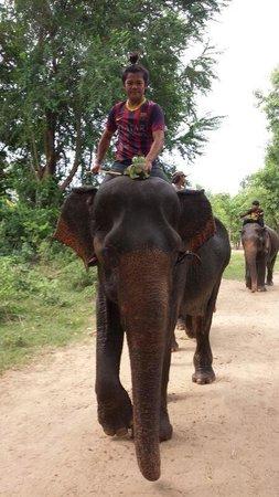 ElephantsWorld: Fred met mahout