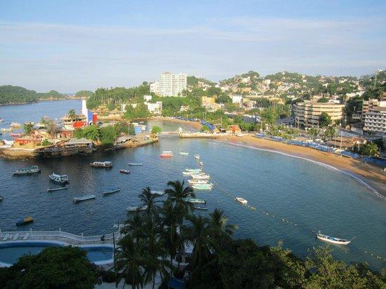 Caleta Beach Resort: Acuario de Caleta
