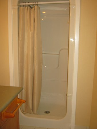 Stone Willow Inn: no bathtub, only a shower stall
