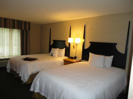 Hampton Inn & Suites Mobile Providence Park/Airport : Beds