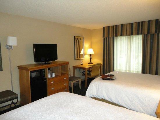 Hampton Inn & Suites Mobile Providence Park/Airport: TV & Desk