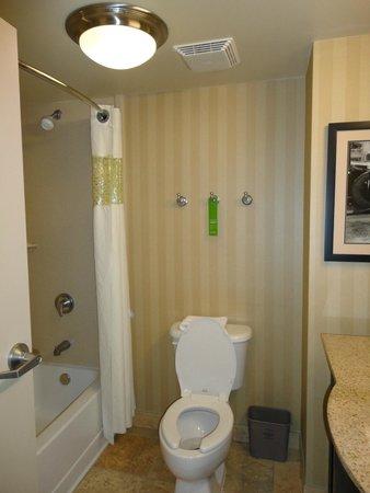 Hampton Inn & Suites Mobile Providence Park/Airport: Toilet & Shower