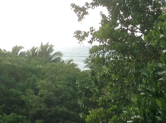 Grand Palladium White Sand Resort & Spa: view of the ocean