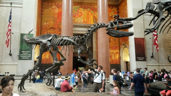 American Museum of Natural History: Entrada do Museo