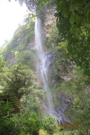 Trinidad and Tobago: Waterfalls, Bays & Beaches - Travel ...  Trinidad And Tobago Maracas Falls