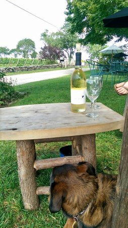 Carolyn's Sakonnet Vineyard : Dog friendly perfection