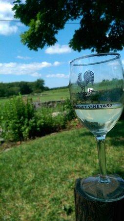 Carolyn's Sakonnet Vineyard: Wonderful views