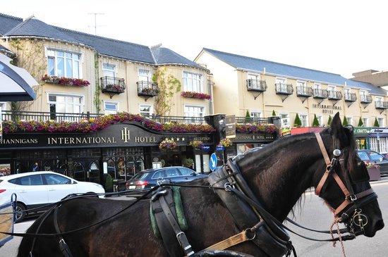International Hotel Killarney: Buggy rides across from hotel