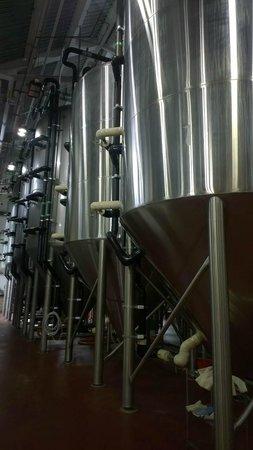 Smuttynose Brewing: Brewery