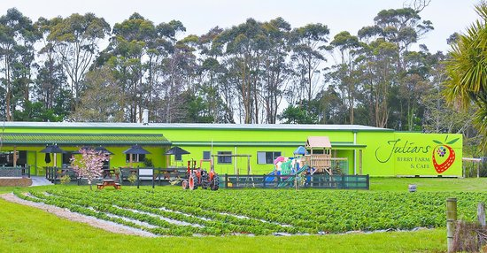 Julians Berry Farm & Café : Julians Berry Farm and Cafe