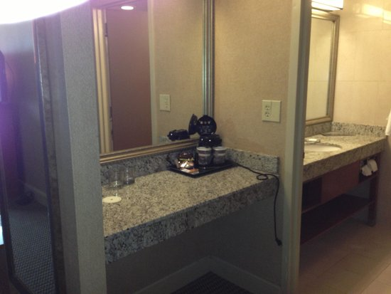 DoubleTree by Hilton & Miami Airport Convention Center: Bathroom Area